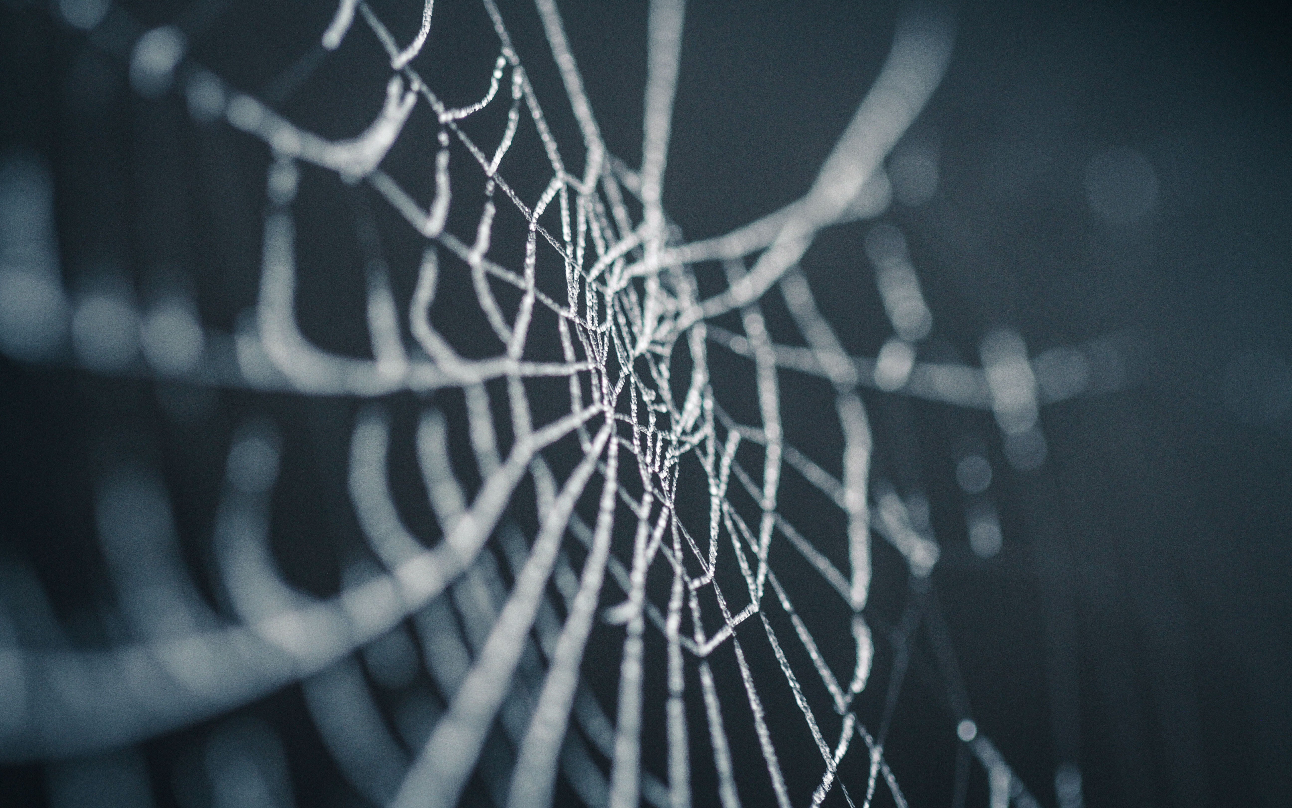 how to create a web crawler in php
