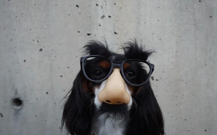 JSON, POJOs and Groovy's HTTPBuilder class - DZone Java