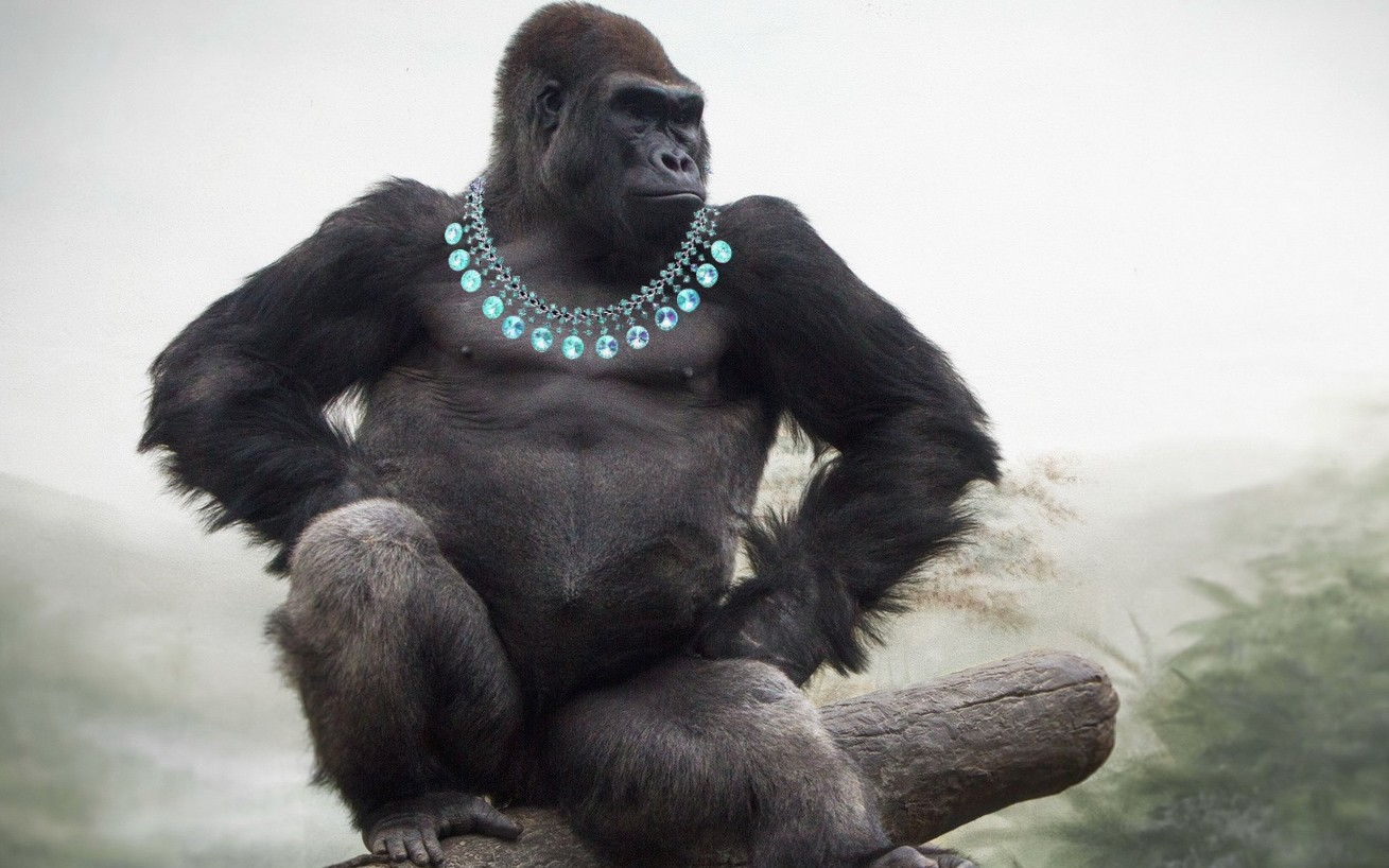 Are 1000lb Gorillas Buying Startups to Look Pretty, or Just