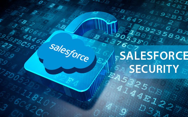 salesforce security guide spring 18