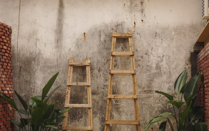 Your Three-Step Ladder to a Successful Tech Startup Team