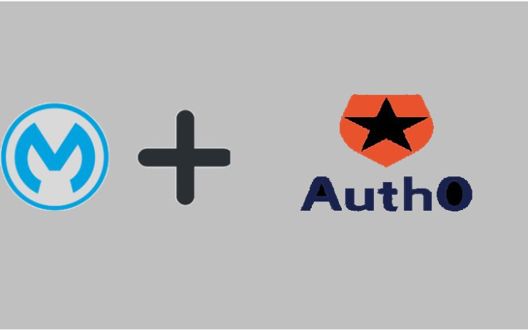 Mulesoft Anypoint Platform SSO Implementation (Auth0)